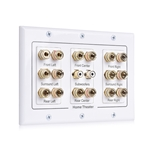 Triple-Gang 7.2.2 Surround Sound Distribution Wall Plate